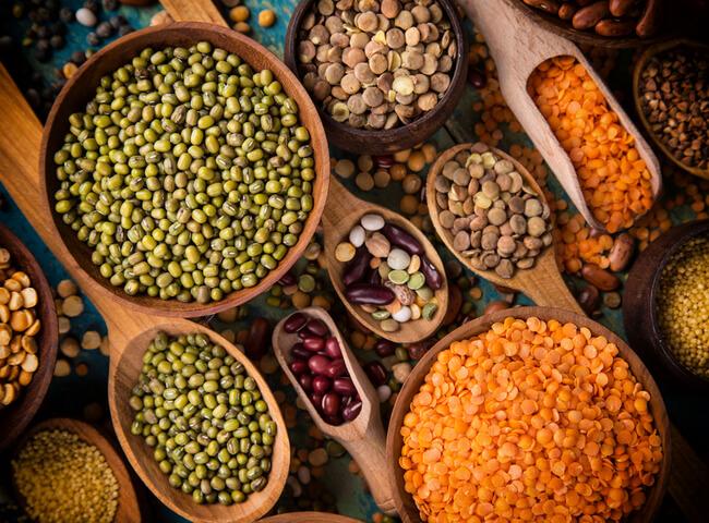 As melhores proteínas vegetais para abastecer os músculos